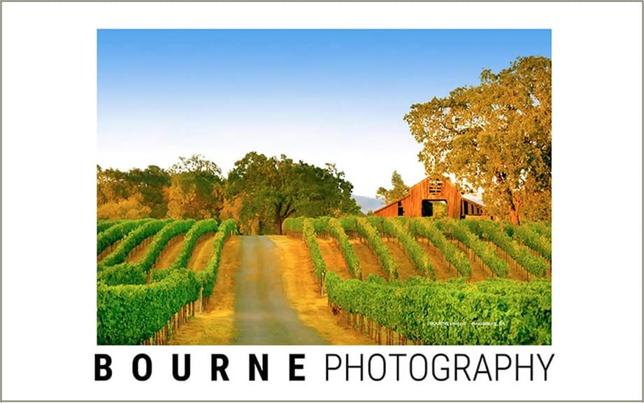 Bourne Photography Healdsburg
