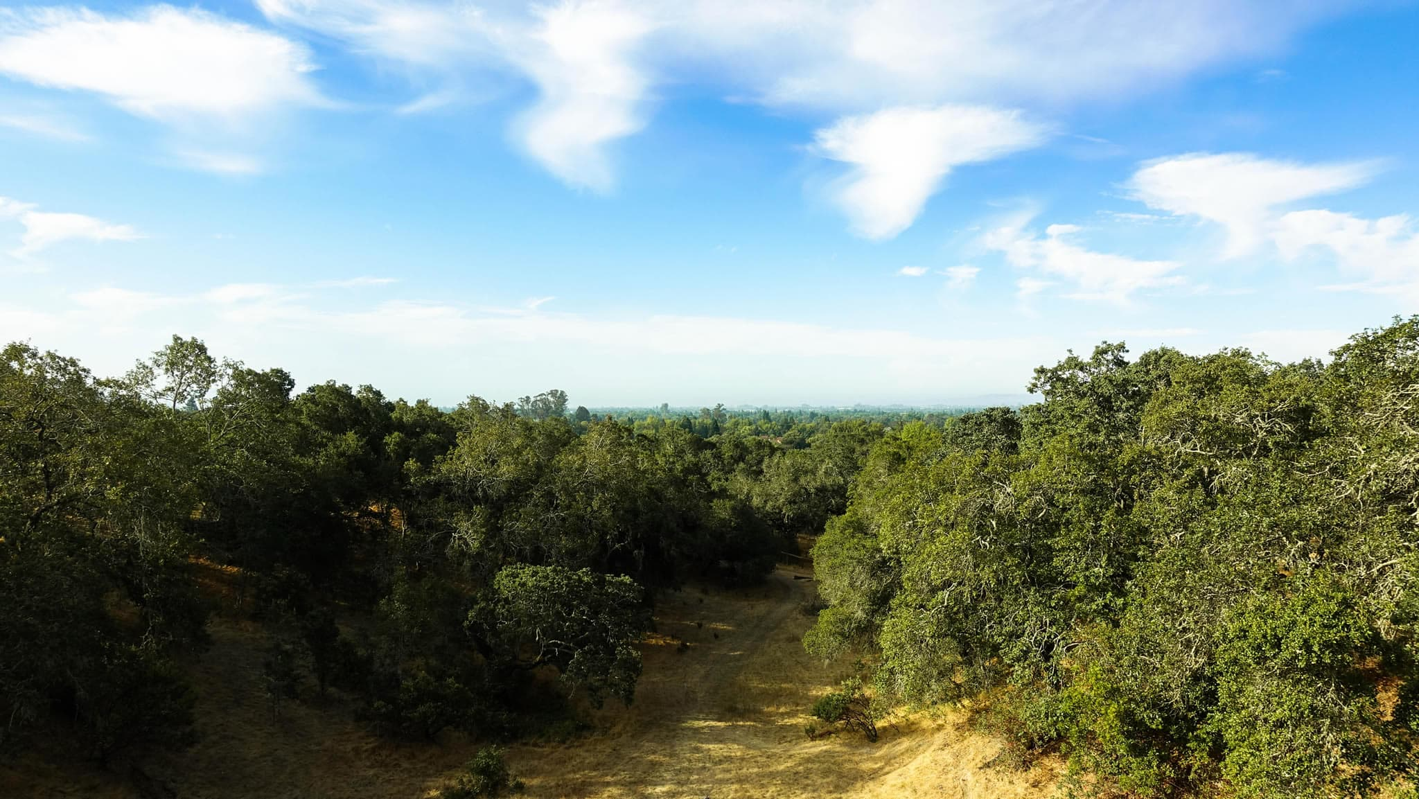 Hike to the heights of Foothills Park's lookout points