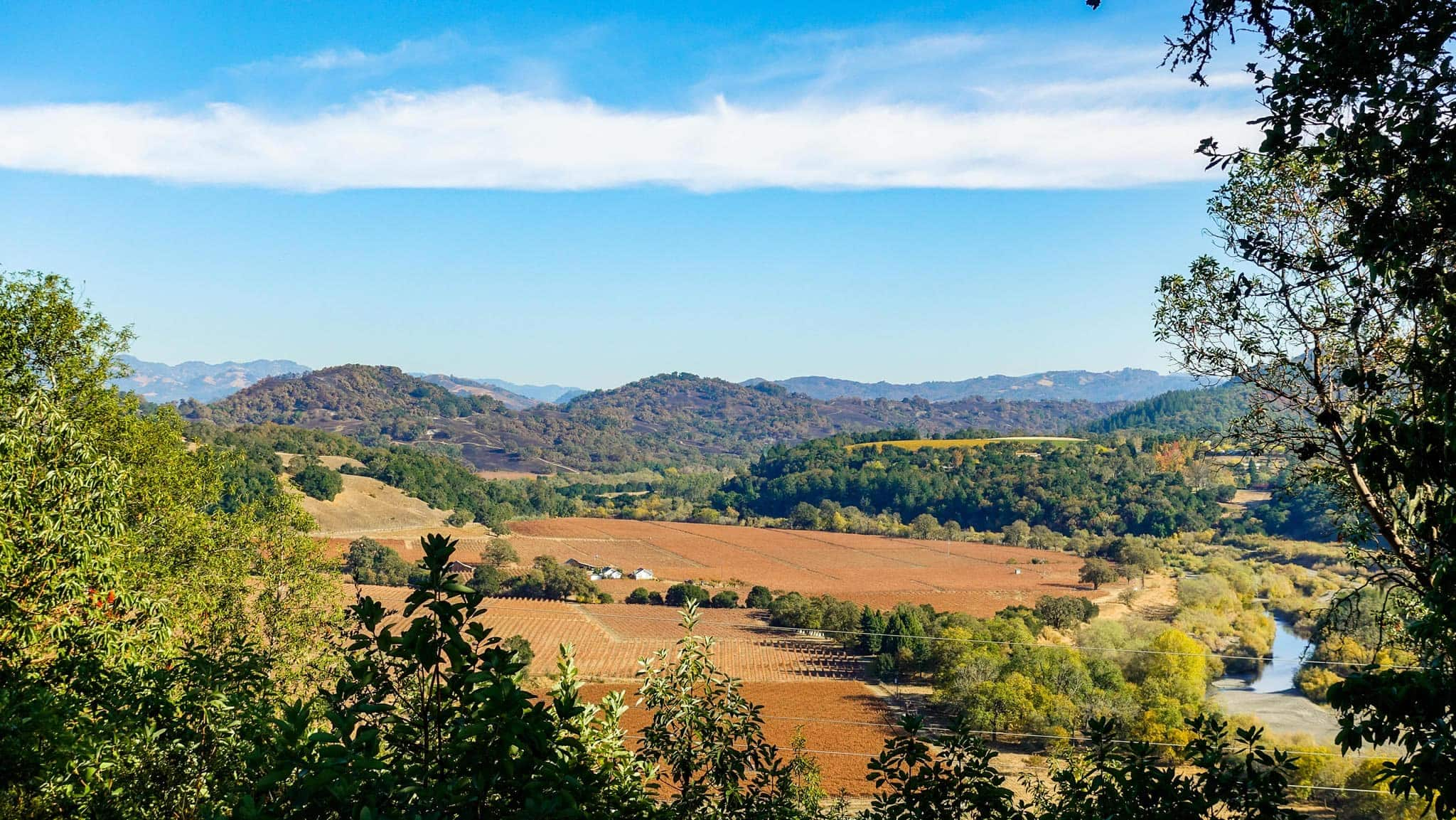 Hike Up to the High Bench View at Open Range Preserve in Healdsburg - Beautiful in Autumn
