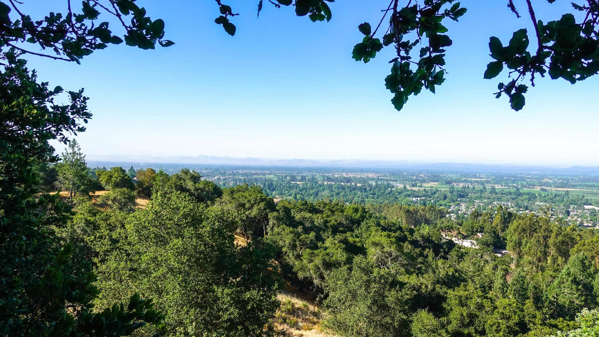 Hiking up to Shiloh Park's Lookout Reveals Incredible Views of Sonoma County