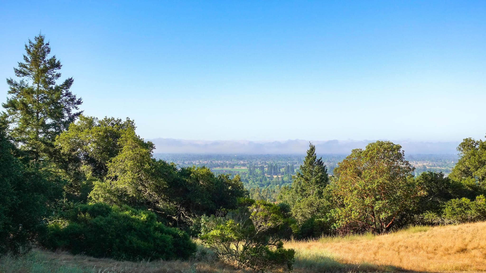 Hiking Near Healdsburg in Shiloh Park