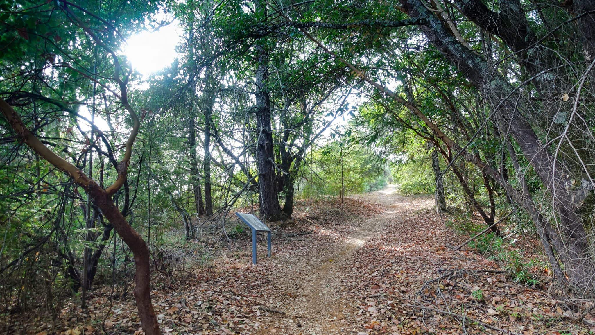 Lake Sonoma Trails Can Be Pretty Steep and Long.