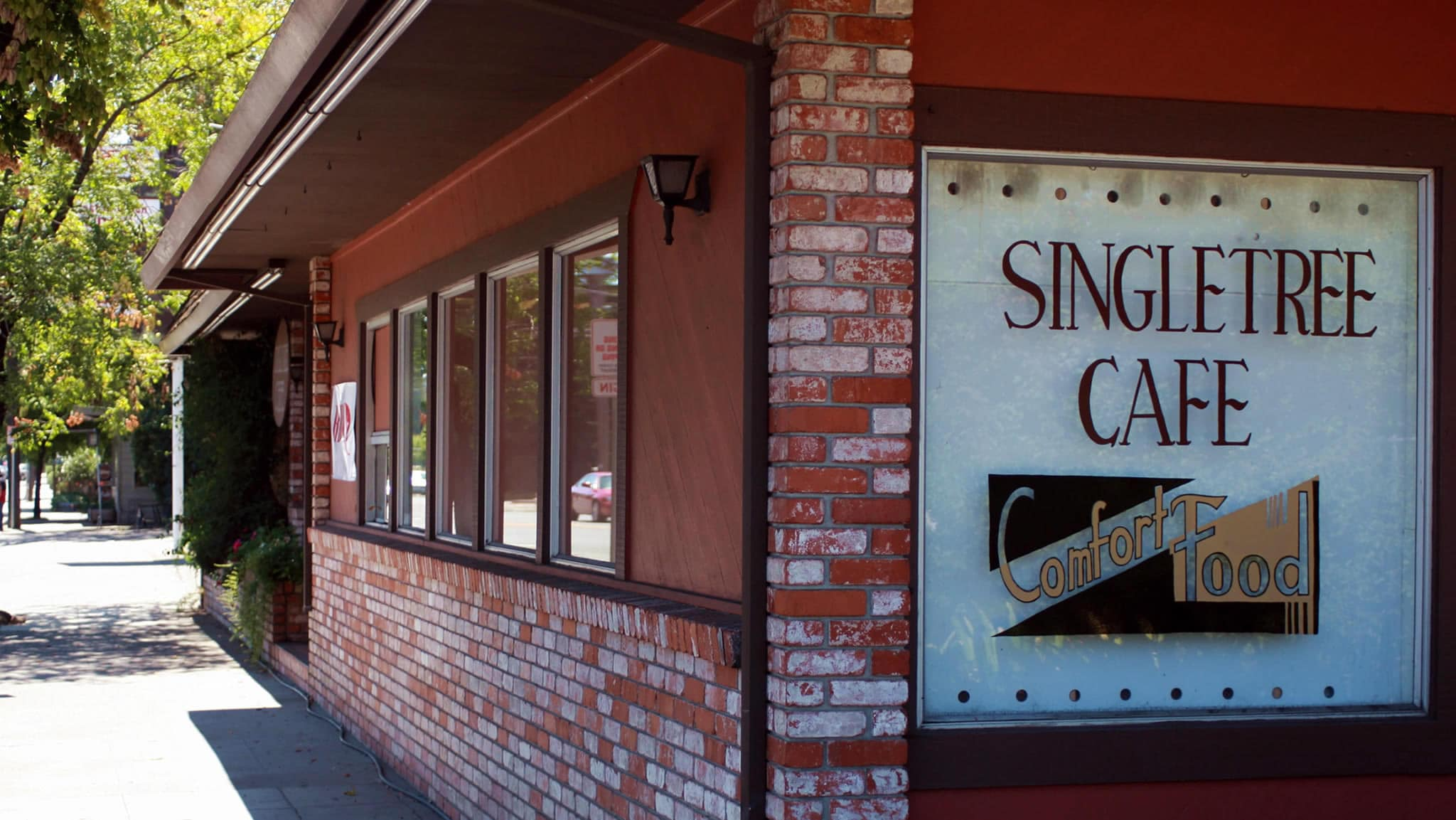 Single Tree Cafe, a Healdsburg Hidden Gem!