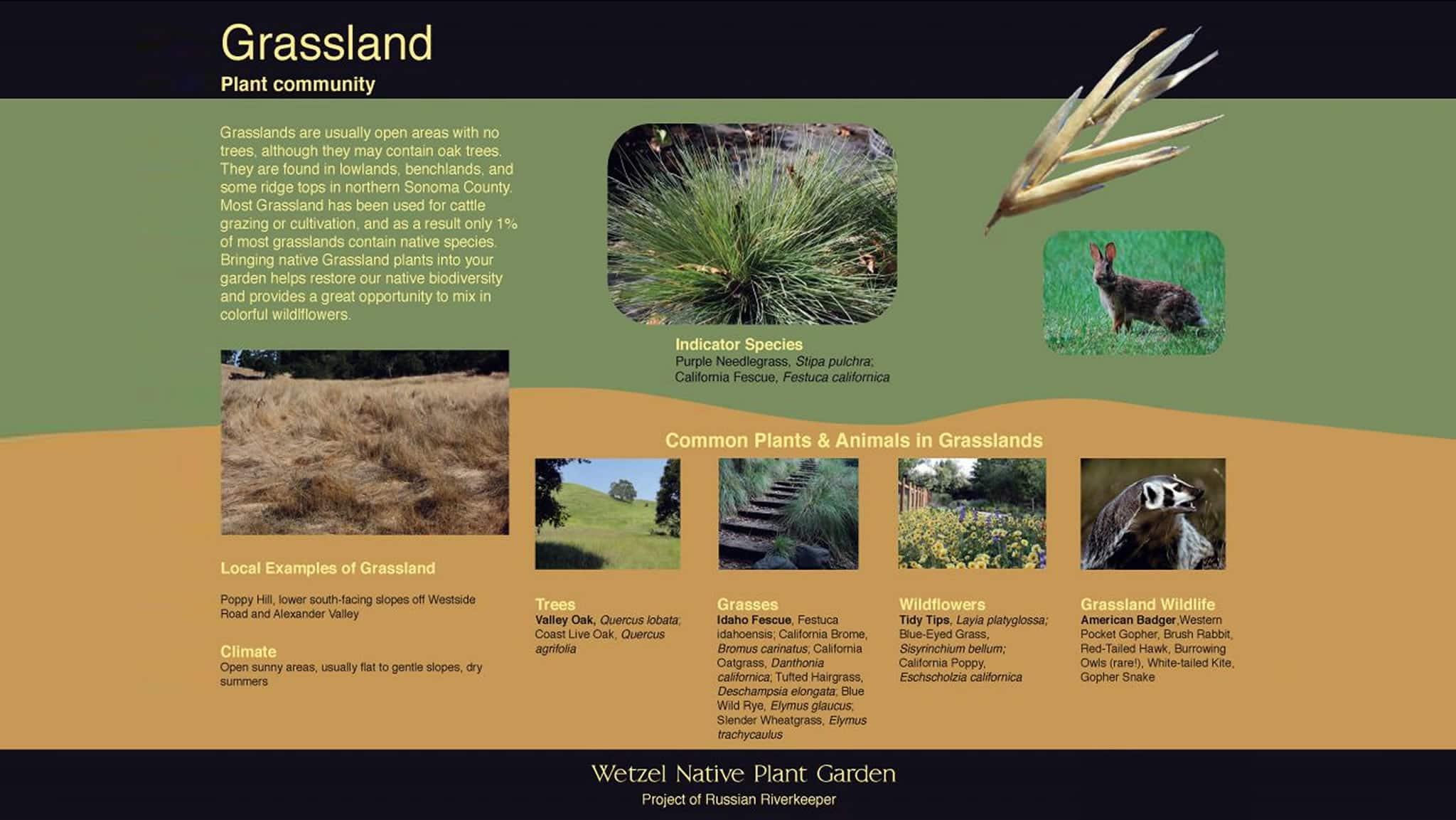 Wetzel Native Plant Garden