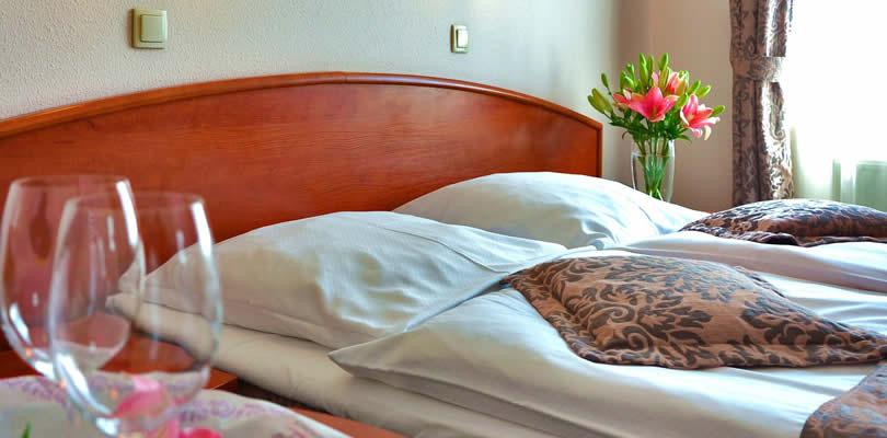 Healdsburg dog friendly hotel rooms